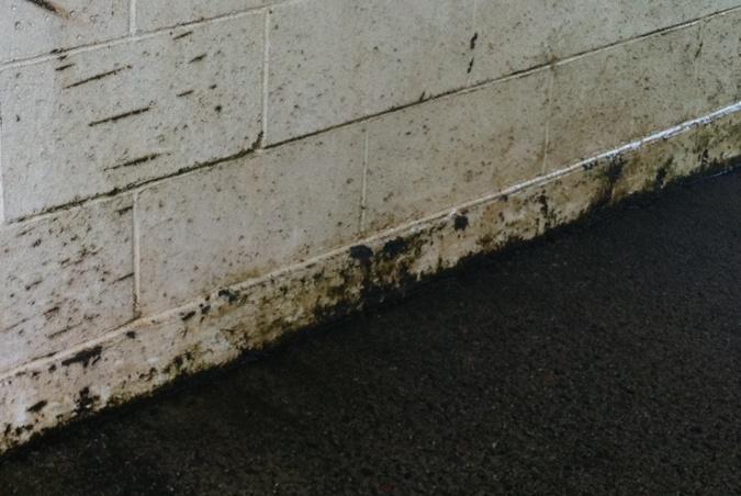 Carwash wall